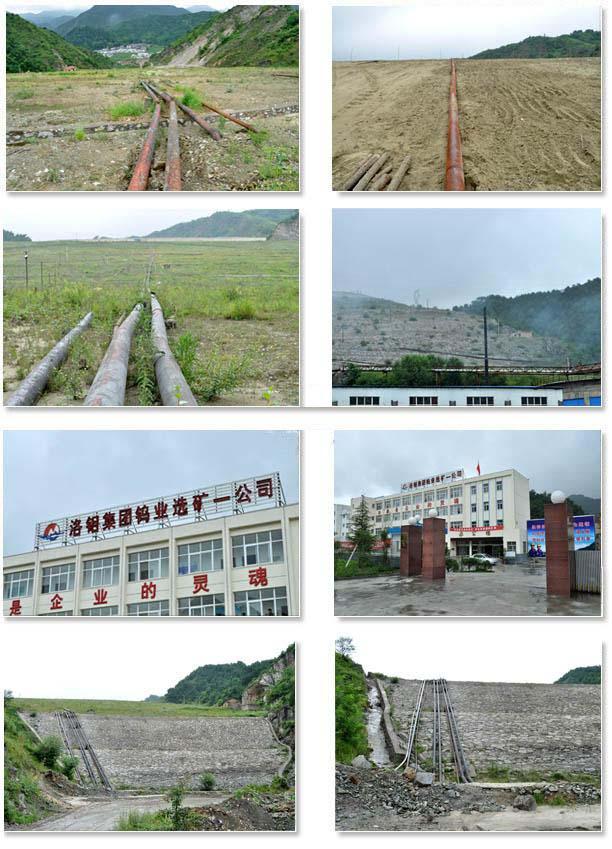 洛钼集团钨业一公司